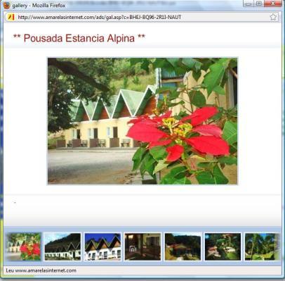 Amarelas Internet - Galeria de Imagens - Premium